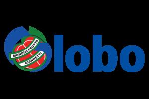 Globo Sora Calendario.Home Argos Volley